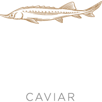 AQUAVIRGO CAVIAR Logo